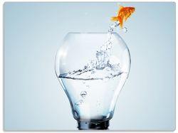 Glasunterlage Goldfisch springt aus Aquarium – Bild 1