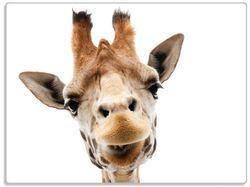 Glasunterlage Giraffenkopf – Bild 1