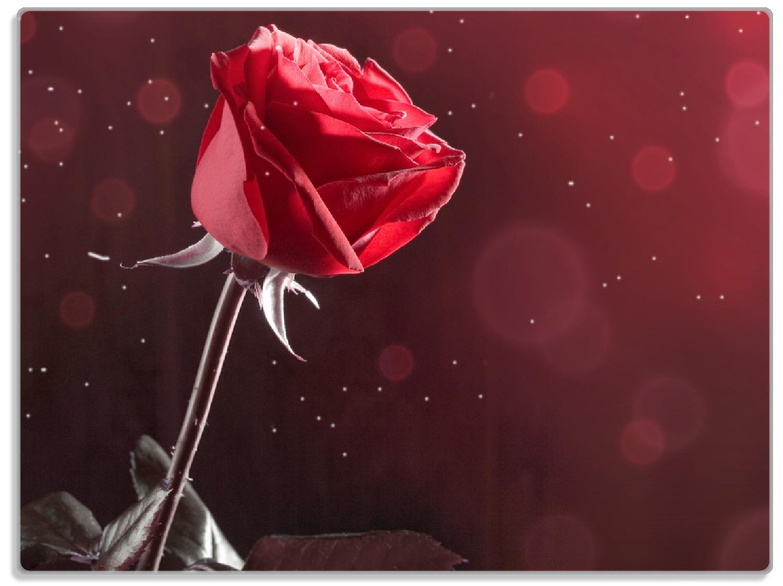 Glasunterlage Rote Rose Single – Bild 1