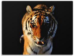 Glasunterlage Laufender Tiger – Bild 1