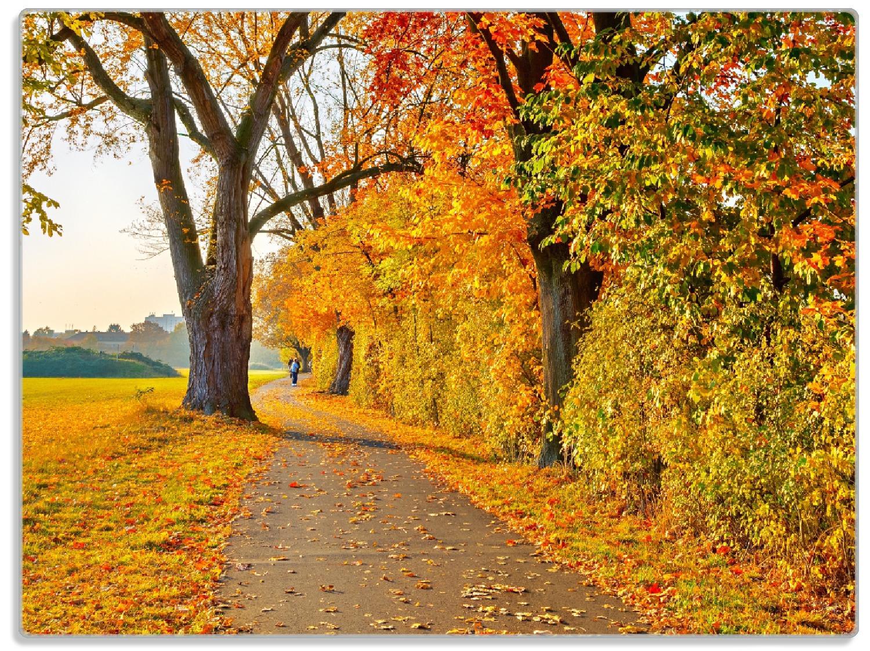 Glasunterlage Herbstlicher Waldweg mit buntem Laub – Bild 1