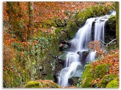 Glasunterlage Bach im Wald – Bild 1