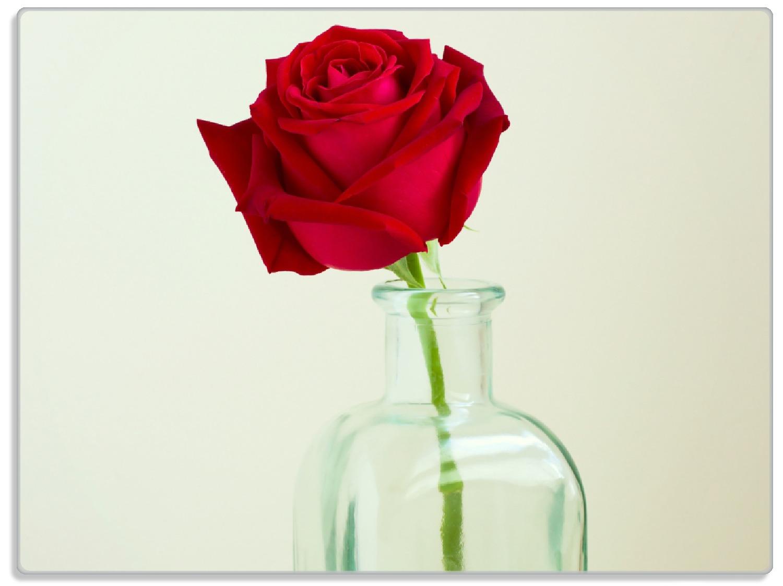 Glasunterlage Rote Rose in Glasvase – Bild 1