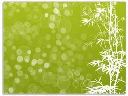 Glasunterlage Bambusmuster grün-weiß – Bild 1