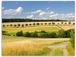 Glasunterlage Feldlandschaft unter blauem Himmel – Bild 1