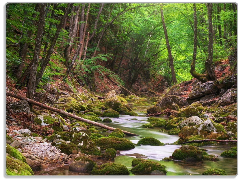 Glasunterlage Fluss im Wald – Bild 1