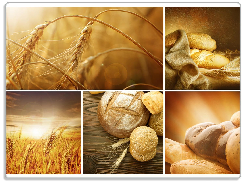 Glasunterlage Getreide und Brotsorten aus Weizen – Bild 1