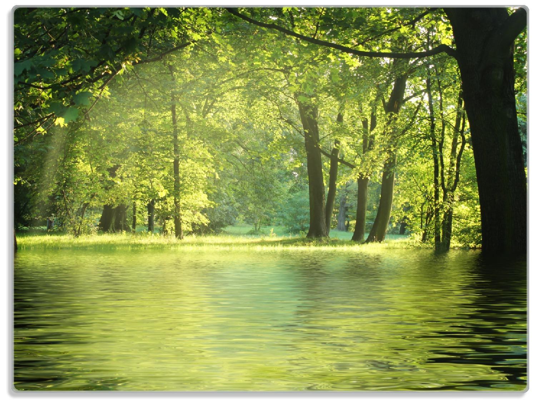 Glasunterlage Idyllischer See im Wald bei Sonnenschein – Bild 1