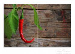 Herdabdeckplatte Hängende Chili-Schote