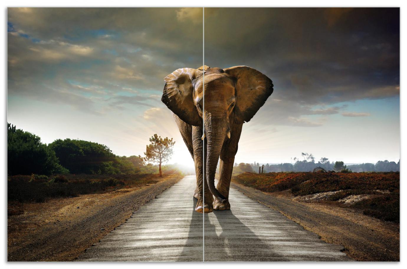 Herdabdeckplatte Elefant bei Sonnenaufgang in Afrika – Bild 1