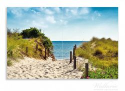Herdabdeckplatte Auf dem Sandweg zum Strand