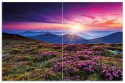 Herdabdeckplatte Blumenbedeckte Wiese bei Sonnenuntergang – Bild 1