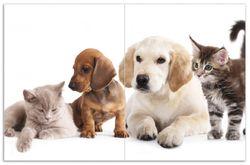Herdabdeckplatte Hundewelpen und Katzenjunge – Bild 1
