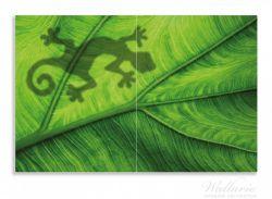 Herdabdeckplatte Gecko Schatten auf grünem Blatt - Umriss