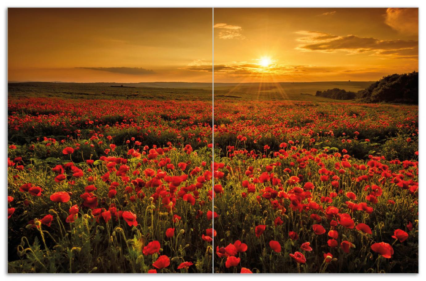 Herdabdeckplatte Mohnblumenwiese bei Sonnenuntergang am Abend – Bild 1