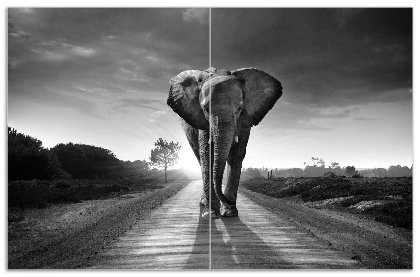 Herdabdeckplatte Elefant bei Sonnenaufgang in Afrika schwarzweiß – Bild 1