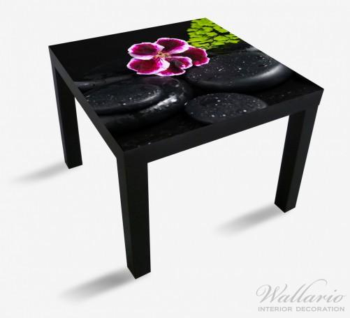 Möbelfolie Purpur Geranienblüte auf schwarzen Basaltsteinen, benetzt mit Wasser-Tropfen – Bild 1
