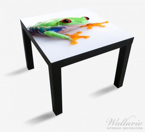 Möbelfolie Lustiger Frosch in grün und orange – Bild 1