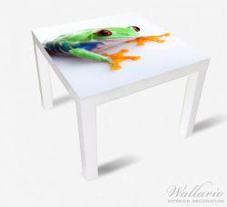 Möbelfolie Lustiger Frosch in grün und orange – Bild 2
