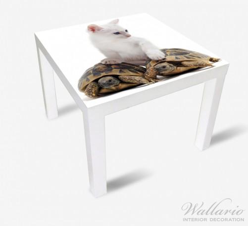 Möbelfolie Katzenfamilie – Bild 2