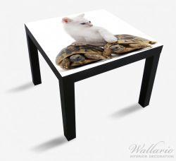 Möbelfolie Katzenfamilie – Bild 1