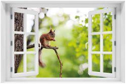 Acrylglasbild Eichhörnchen auf einem Ast
