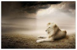 Herdabdeckplatte Stattlicher ruhender Löwe in Afrika in Sepiafarben – Bild 1
