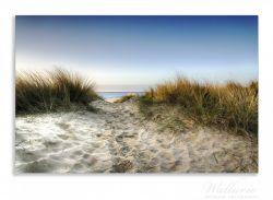 Herdabdeckplatte Weg durch die Dünen zum Strand am Meer