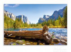 Herdabdeckplatte Baumstamm im Fluss zwischen Bergen und Wäldern