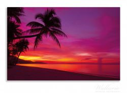 Herdabdeckplatte Abendrot unter Palmen - pinker Himmel am Strand