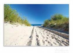 Herdabdeckplatte Auf dem Sandweg zum Strand - Blauer Himmel über dem Meer