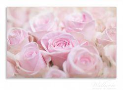 Herdabdeckplatte Rosafarbene Rosenblüten im Strauß