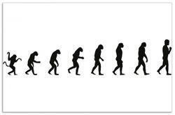 Herdabdeckplatte Evolution - Die Entwicklung des Menschen – Bild 1