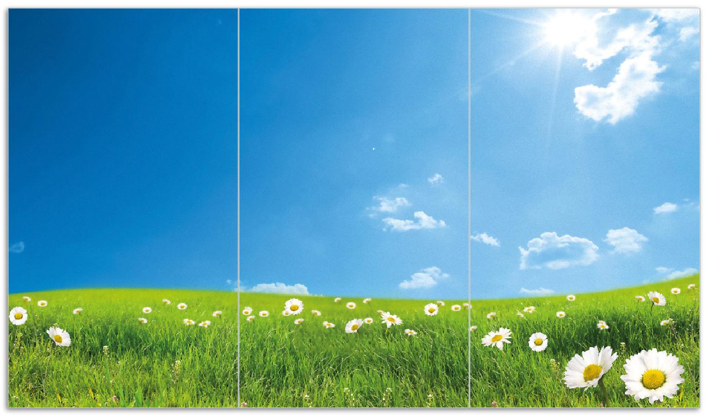 Herdabdeckplatte Sommerwiese - Weiße Gänseblümchen vor blauem Himmel – Bild 1