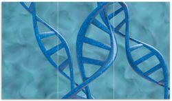 Herdabdeckplatte DNA-Strang in blau auf türkisem Hintergrund
