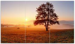 Herdabdeckplatte Sonnenaufgang über der Wiese mit Nebel