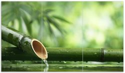 Herdabdeckplatte Bambusquelle  Bambusrohr mit Wasser
