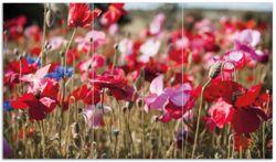 Herdabdeckplatte Mohnblumen am Rande eines Feldes – Bild 1