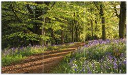 Herdabdeckplatte Blaues Hasenglöckchen im Sommerwald – Bild 1