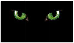 Herdabdeckplatte Grün leuchtende Katzenaugen bei Nacht