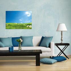 Wandbild Sommerwiese - Weiße Gänseblümchen vor blauem Himmel – Bild 2