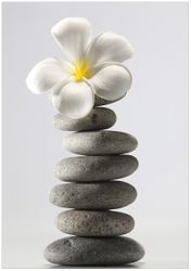 Wandbild Blume auf gestapelten Steinen – Bild 1