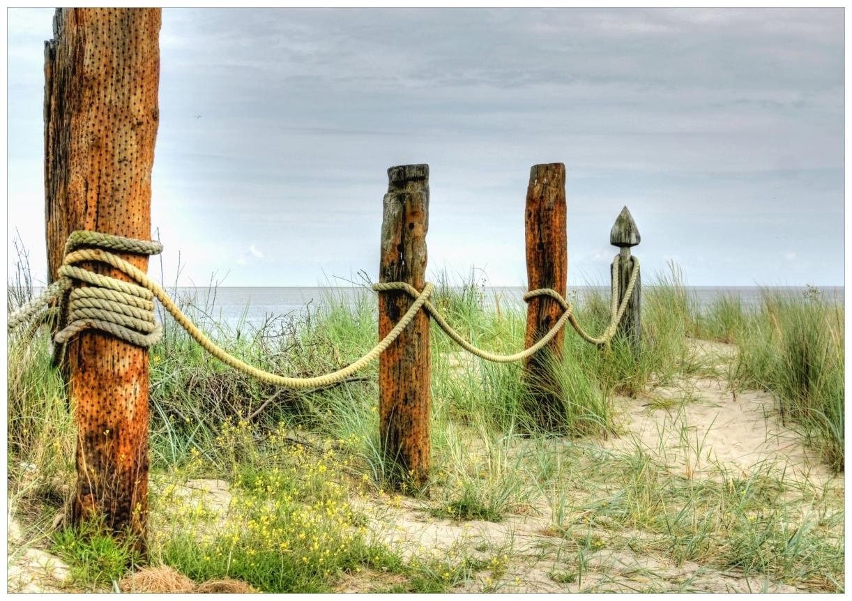 Wandbild Düne am Strand mit Holzpfahl – Bild 1