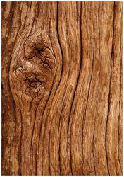 Wandbild Holzstamm mit Asteinschluss – Bild 1