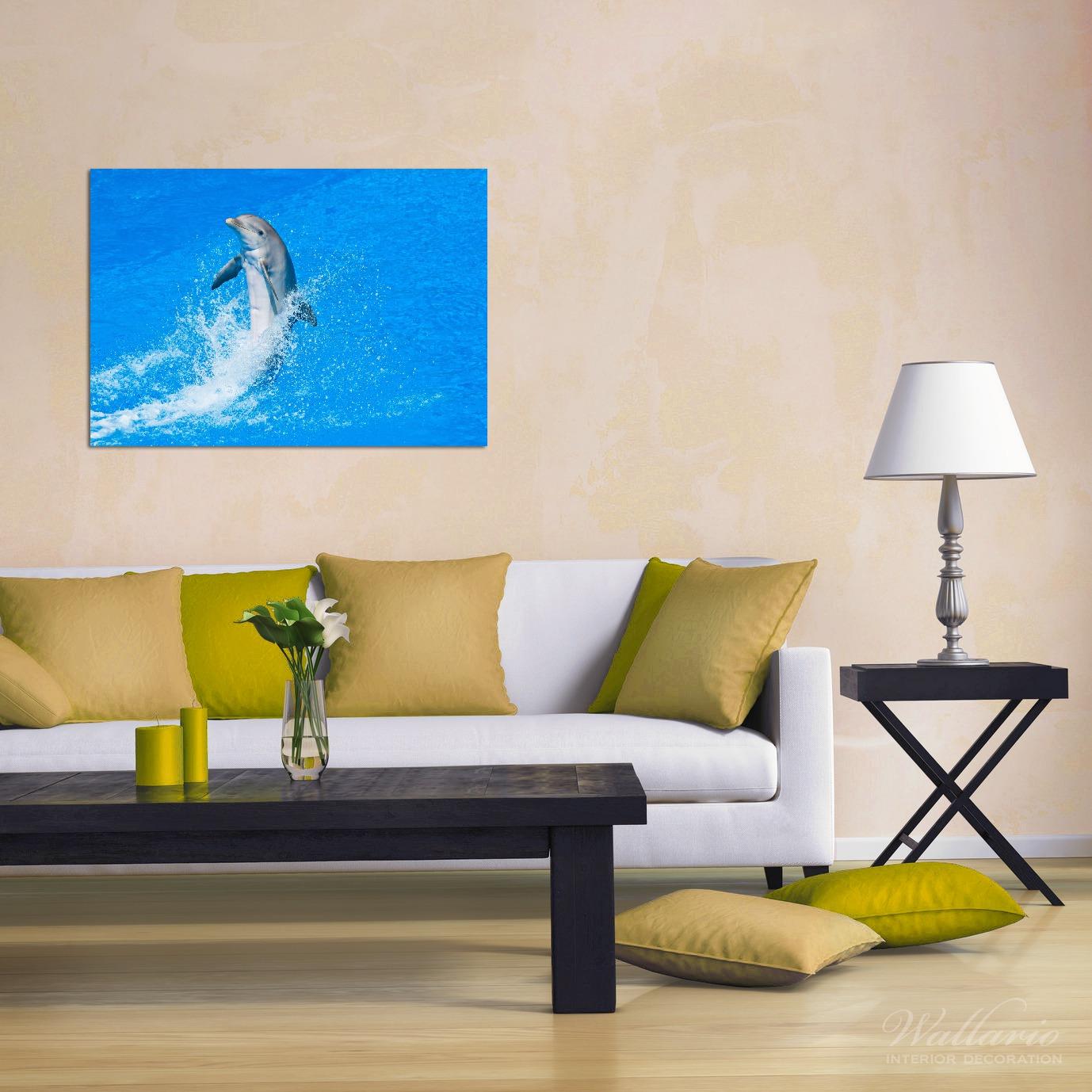 Wandbild Fröhlicher Delfin im blauen Wasser – Bild 2