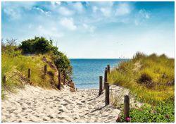 Wandbild Auf dem Sandweg zum Strand – Bild 1