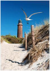 Wandbild Möwe am Strand mit Leuchtturm – Bild 1