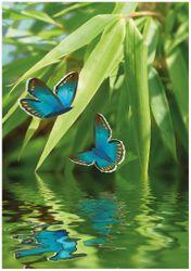 Wandbild Schmetterlinge in Reflektion – Bild 1