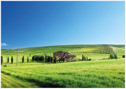Wandbild Farm in der Toskana – Bild 1