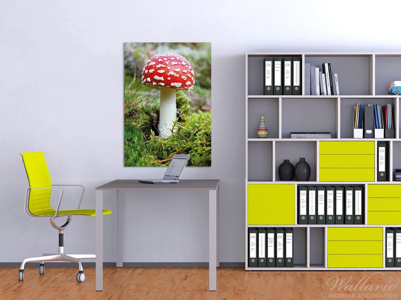 Wandbild Fliegenpilz im Wald – Bild 2